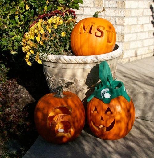 Pumpkins4